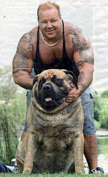 สุนัขที่ตัวใหญ่ที่สุดในโลก